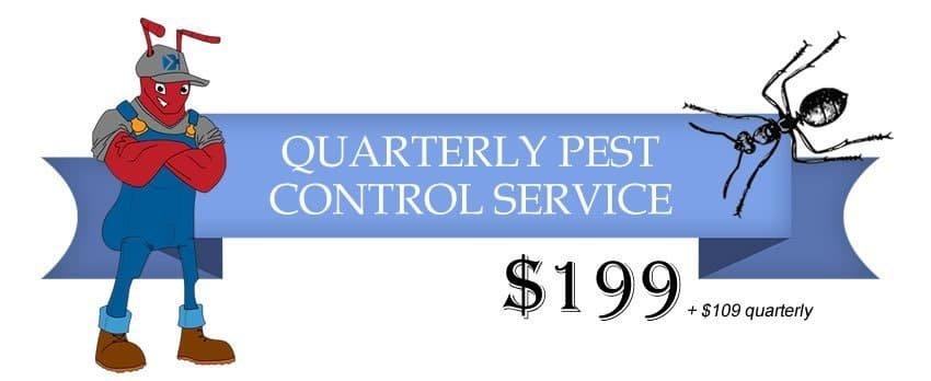 quarterly pest control
