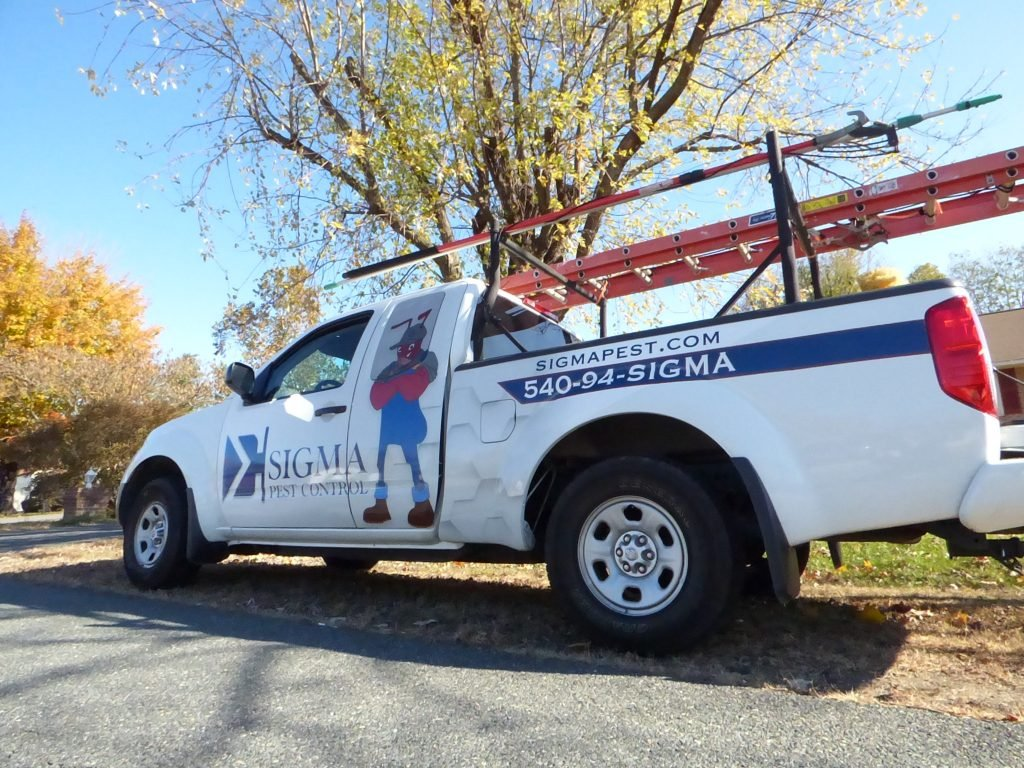 Pest Control Costs in Fredericksburg
